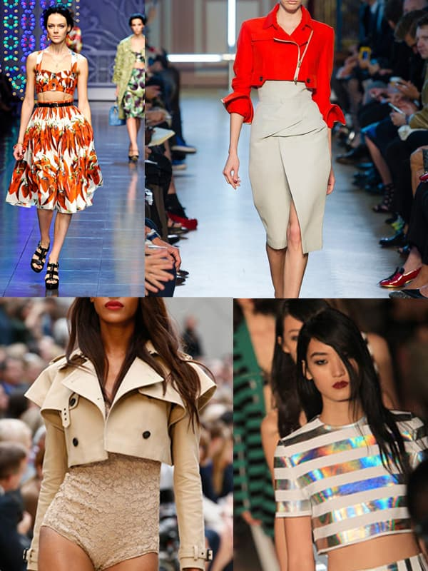 cropped-tops-designers-2013