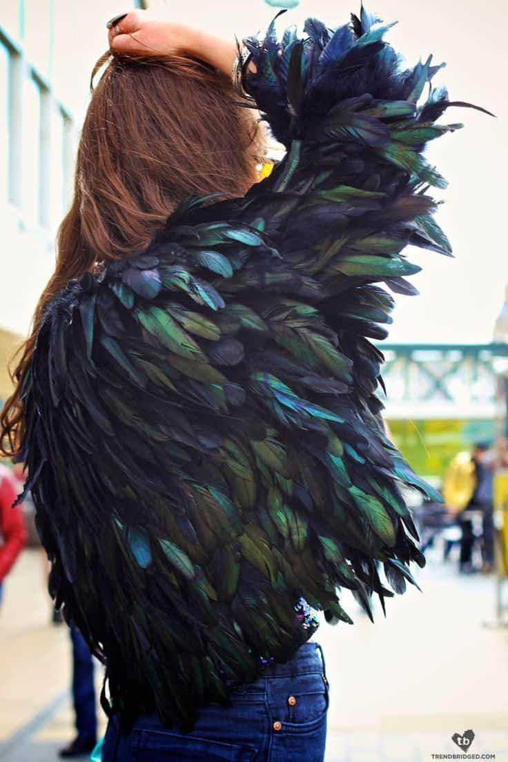 2014 Fall Trend: FEATHERS! – The Fashion Tag Blog