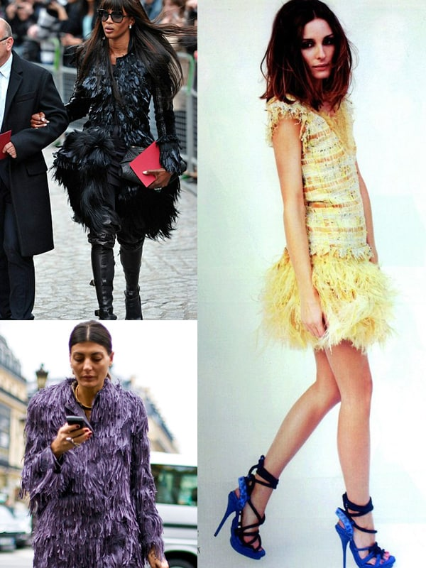 feathers-looks-chic