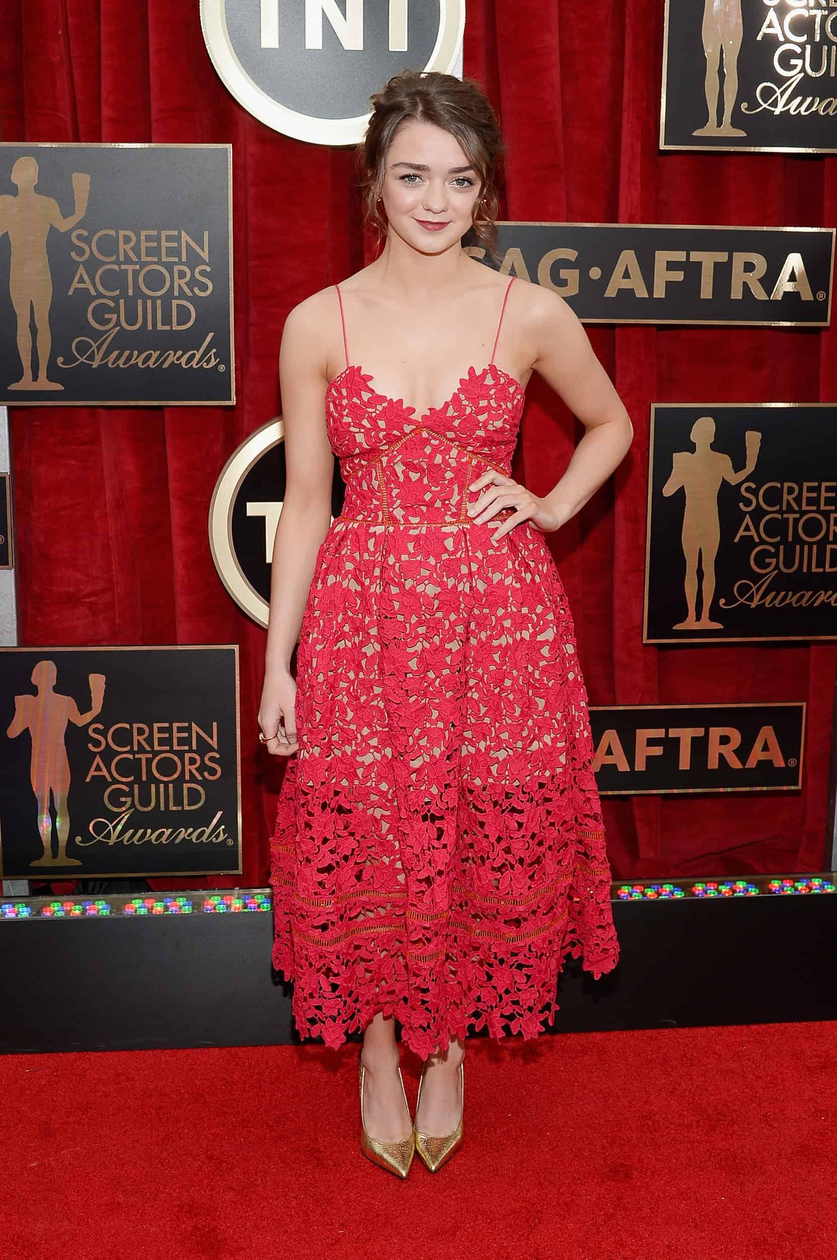 2015-sag-awards-red-carpet-1