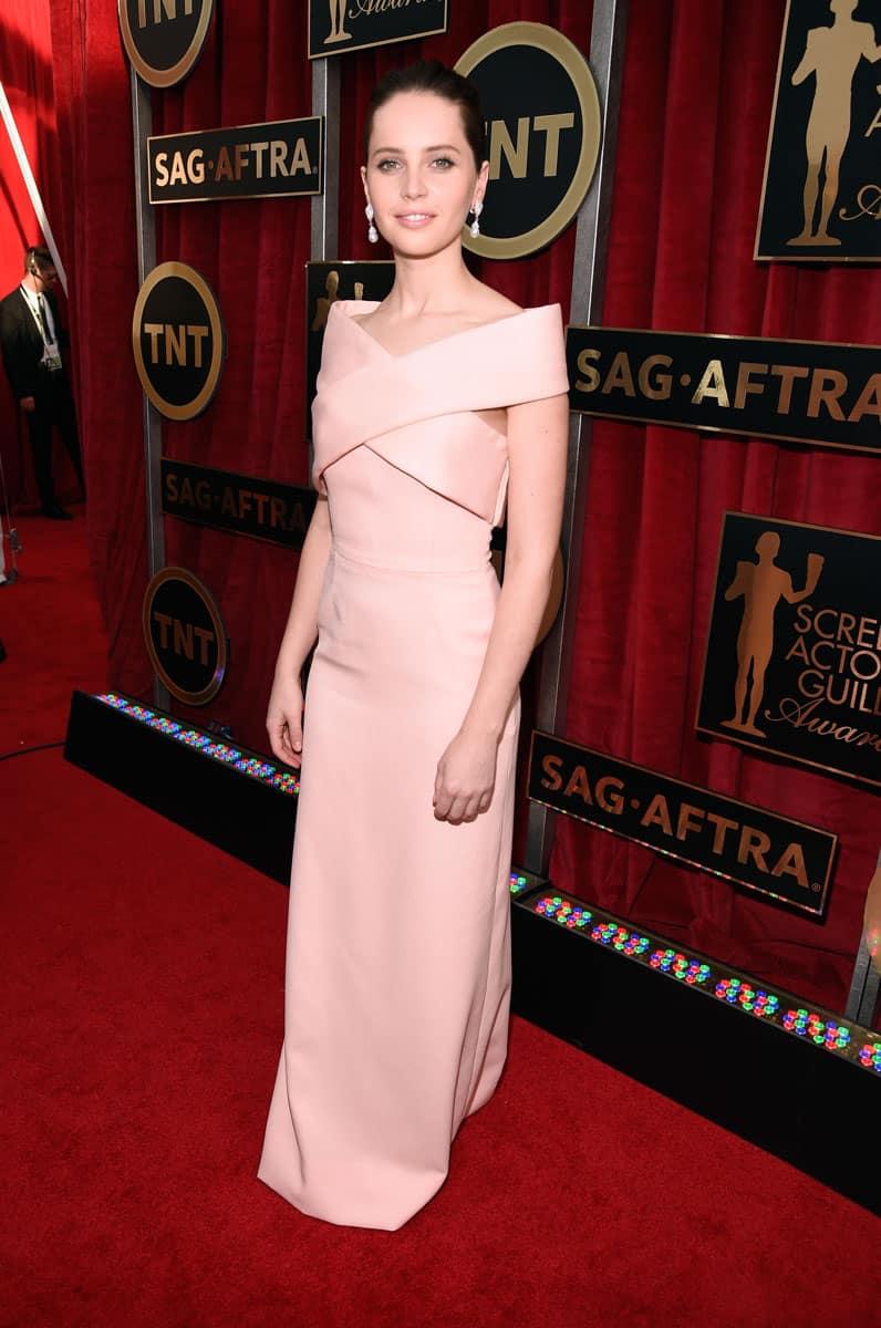 Felicity-Jones-2015-sag-awards-red-carpet-best-worst-dressed