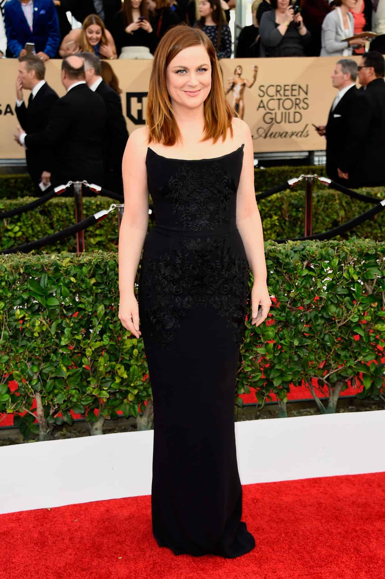 amy-poehler- 2016-sag-awards-red-carpet