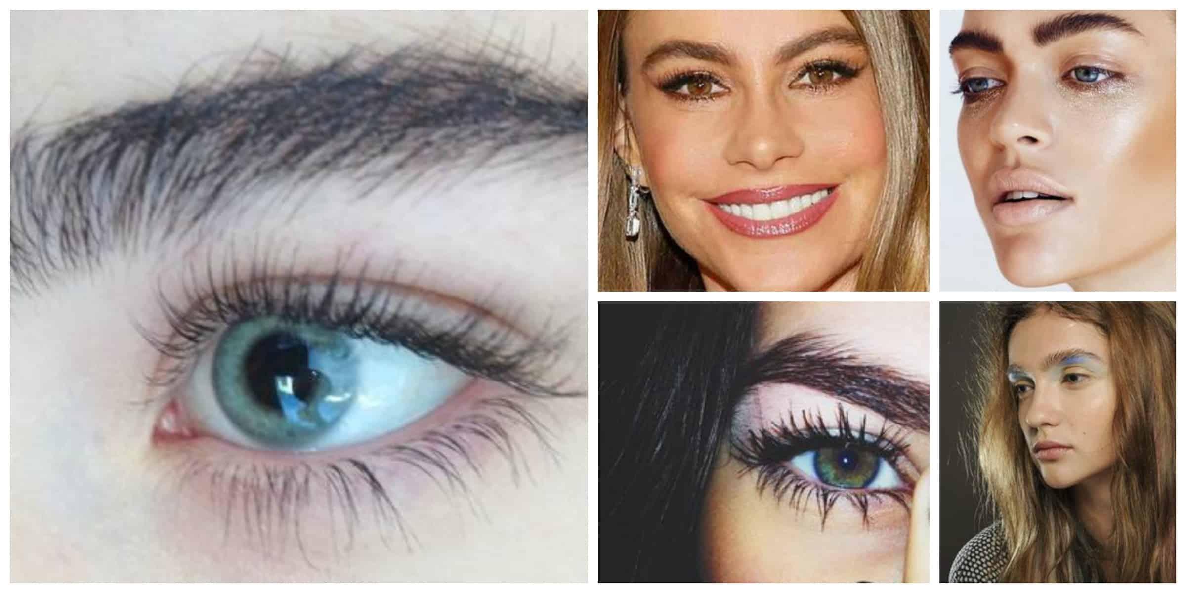 brushed-up-eyebrows
