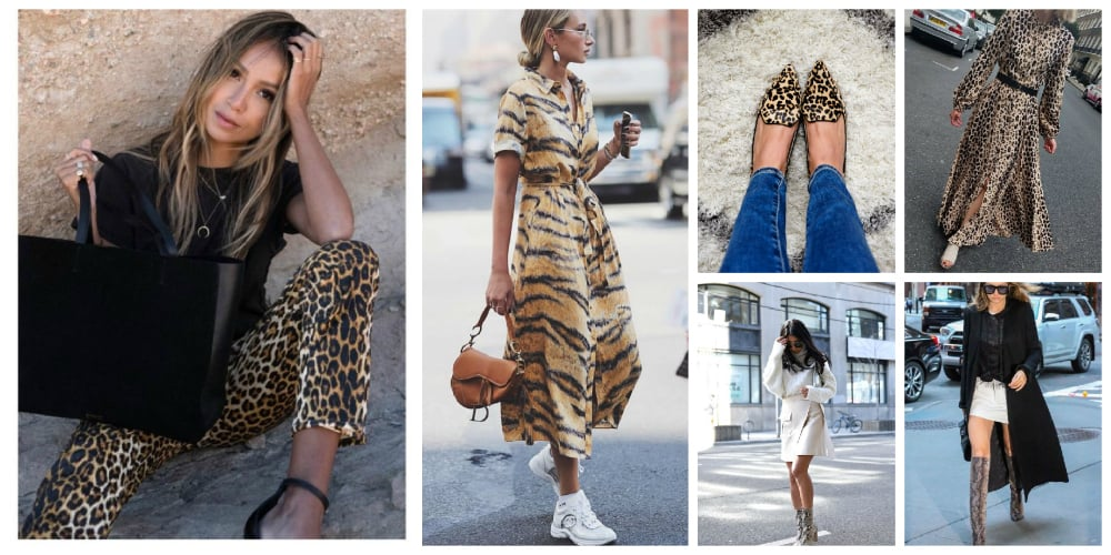 a81eefd5e72 This will be my new year s fall fashion challenge  head-to-toe animal print   extraaf